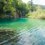 "Lacs de Plitvice • <a style=""font-size:0.8em;"" href=""http://www.flickr.com/photos/56388541@N06/20429177256/"" target=""_blank"">View on Flickr</a>"