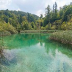 "Lacs de Plitvice • <a style=""font-size:0.8em;"" href=""http://www.flickr.com/photos/56388541@N06/20267293730/"" target=""_blank"">View on Flickr</a>"